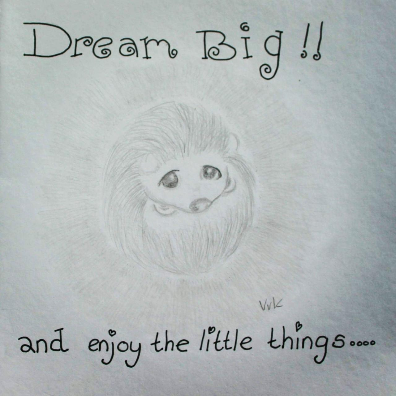 Dream big little hedgehog