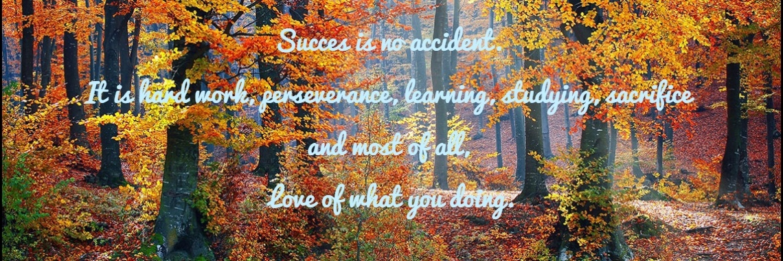 Succes is no accident.  It is hard work, perseverance, learning, studying, sacrifice  and most of all,  Love of what you doing.