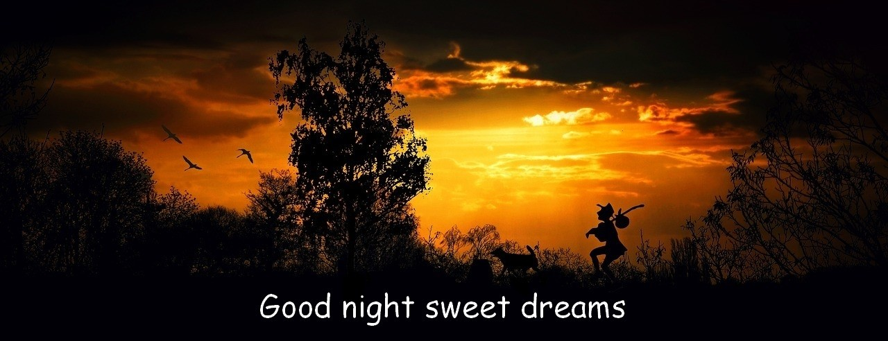 Good Night And Sweet Dreams Goog Night Welterusten Slaap Lekker