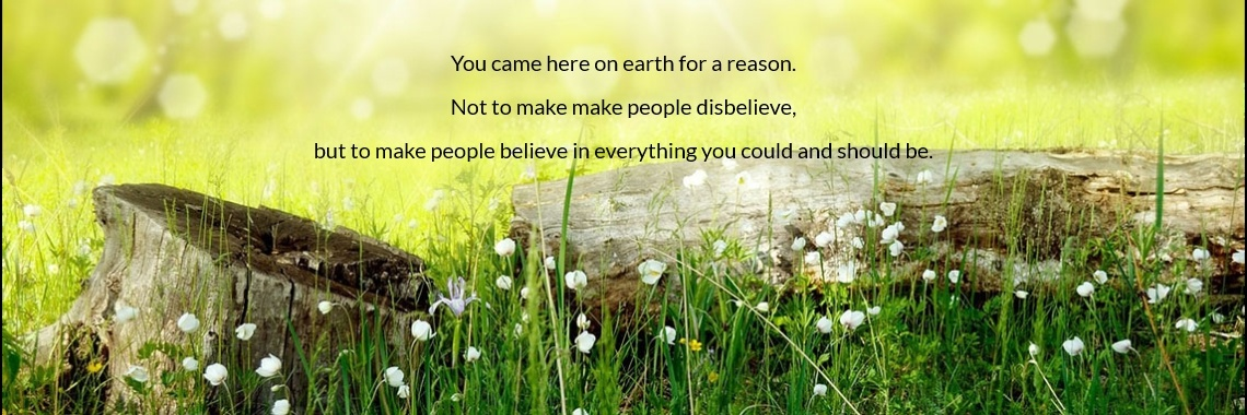 You came here on earth for a reason. Not to make make people disbelieve, but to make people believe in everything you could and should be.