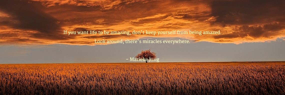 If you want life to be amazing, don't keep yourself from being amazed. Look around, there's miracles everywhere.  - Marieke Jung