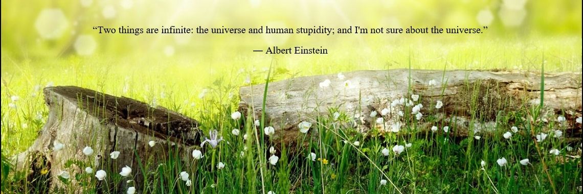 """Two things are infinite: the universe and human stupidity; and I'm not sure about the universe."" 