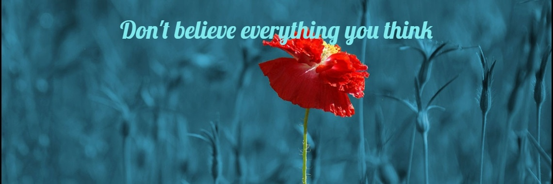 Dont Believe Everything You Think Quote Wijs Woorden