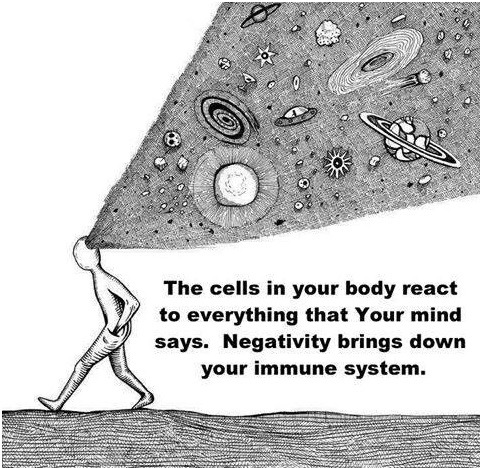 ~ The cells in your body react to everything Your Mind says ~