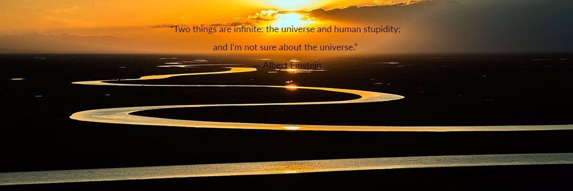 """Two things are infinite: the universe and human stupidity; 
