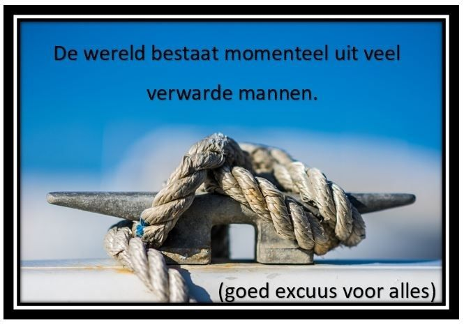 Excuus Voor Ongemak Quote Of The Day
