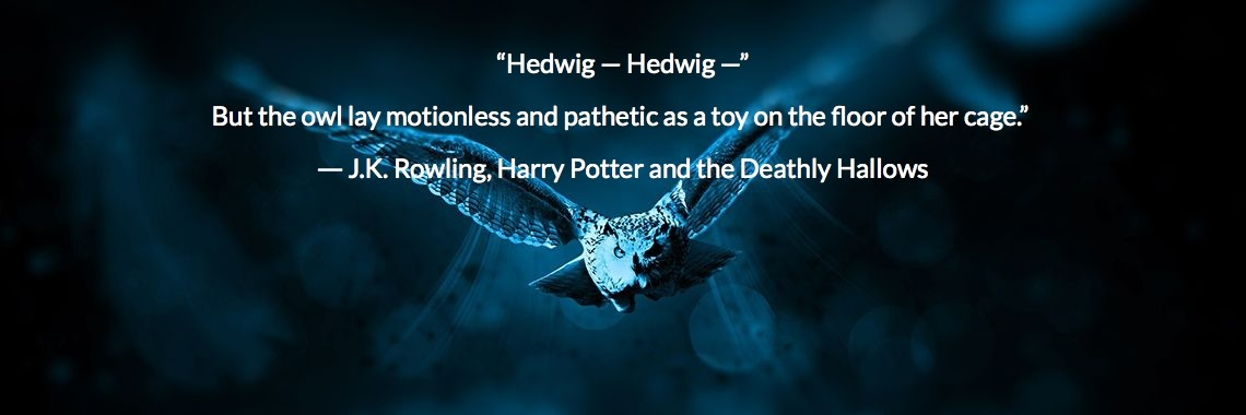 """""""Hedwig — Hedwig —"""" But the owl lay motionless and pathetic as a toy on the floor of her cage.""""  ― J.K. Rowling, Harry Potter and the Deathly Hallows"""