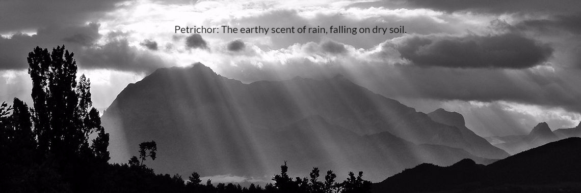 Petrichor: The earthy scent of rain, falling on dry soil.